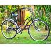 จักรยานแม่บ้านญี่ปุ่นมีเกียร์ Agenda ระบบไฟหน้าออโต้ - A067